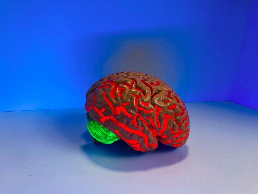 De dopamineloop is een oorzaak van uitstelgedrag